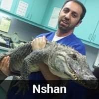 Team member Nshan holding either an alligator or crocodile